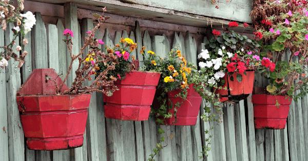 vertical planter box